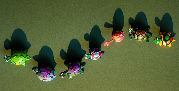 Colourful Migration by Acancarter