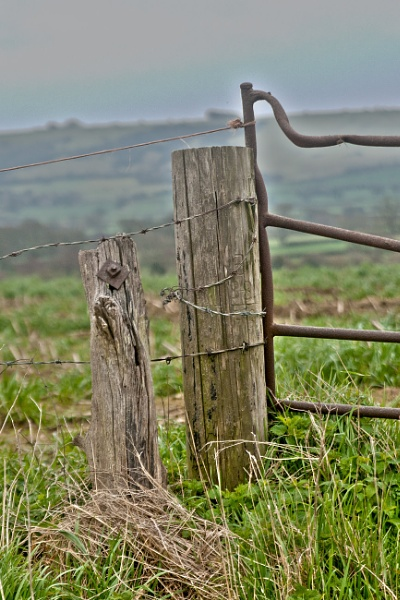 Gate and Post by pledwith