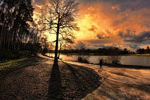 Tillgate Park, Crawley. by sandwedge
