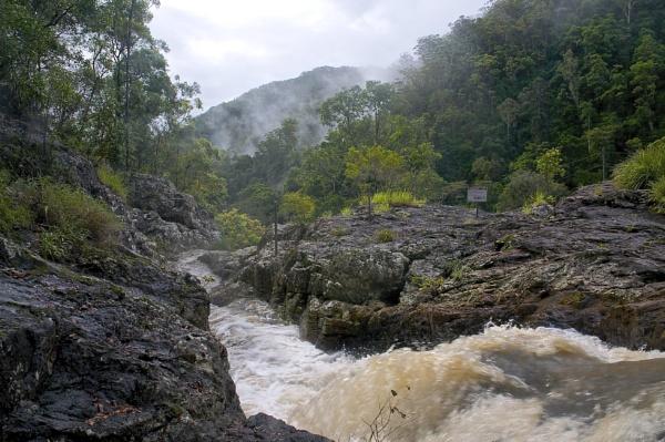Kondillia National Park by harrywatson