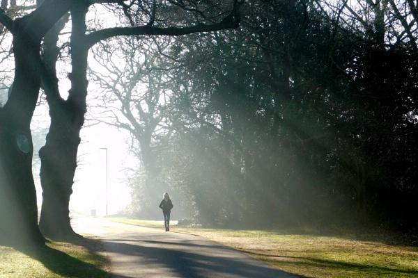 Sunrays walk by SUE118