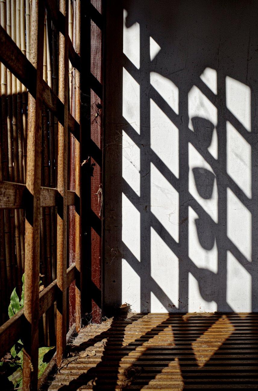 Shadow Grid