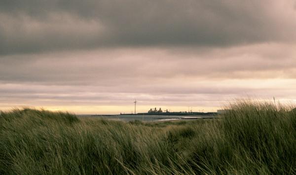 Through the Dunes by nstewart