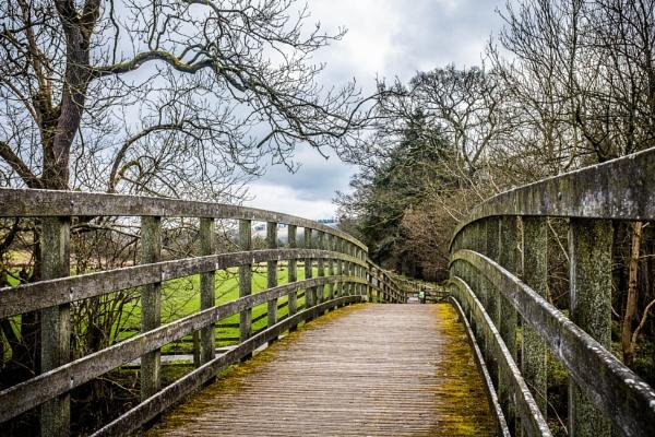 The Footbridge by mbradley