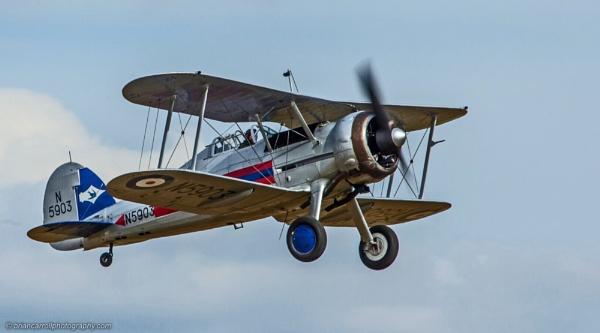 Gloster Gladiator mark 2 --N5903    G-GLAD by brian17302