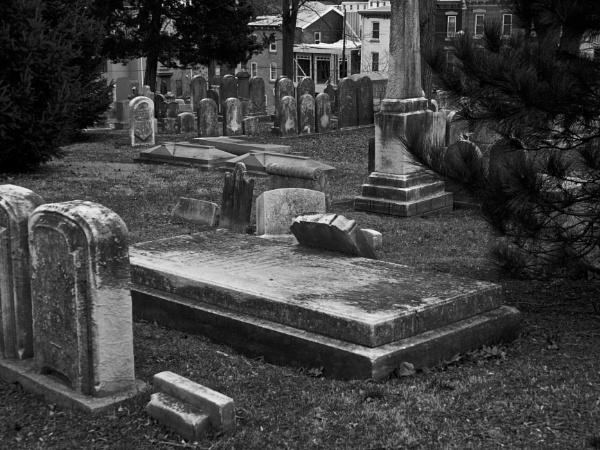 Laurel Hill Cemetery #1 by handlerstudio