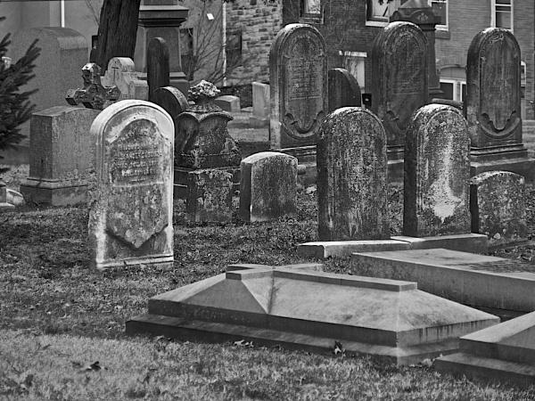 Laurel Hill Cemetery #2 by handlerstudio