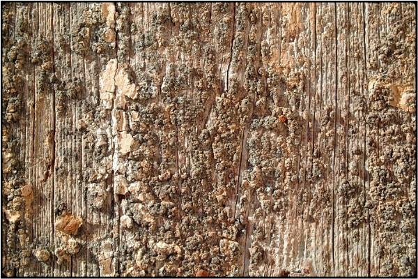 wallscapes 12 by FabioKeiner