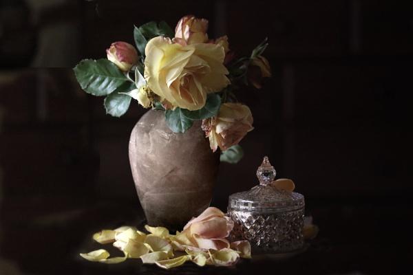 Rose Vase by MJJ2810