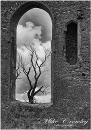 Covehithe church ruins (1)