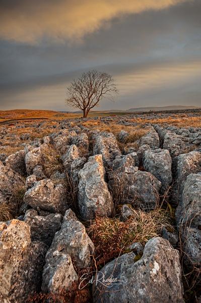 Limestone Rocks! by edrhodes