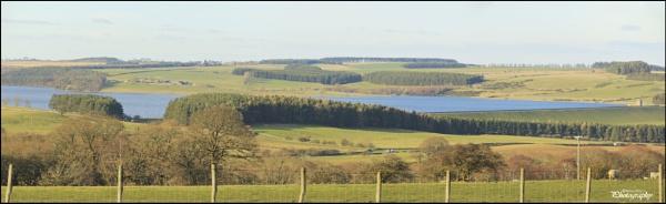 The Derwent reservoir , in County Durham UK by shedhead
