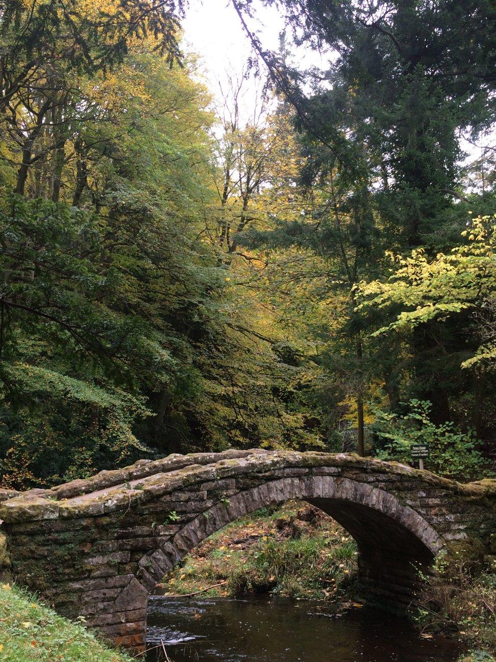 Old bridge Cragside Northumberland