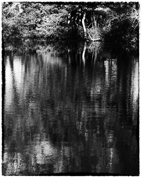 Wallington Reflections by woolybill1