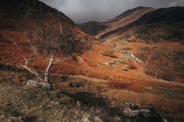 Walking up the Watkin Path by Brenty