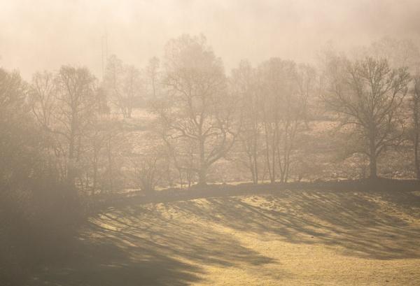 Morning shadows by PaulHolloway