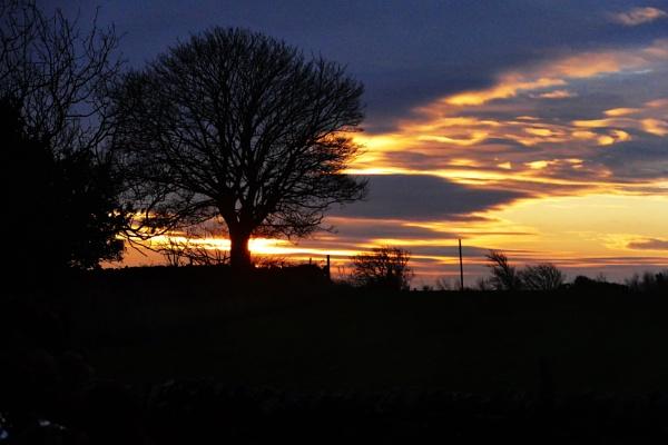 Golden sunrise by HobbitDave
