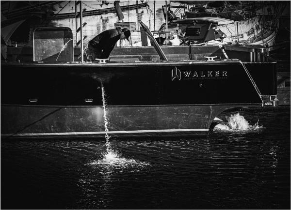 Walker Went by Daisymaye