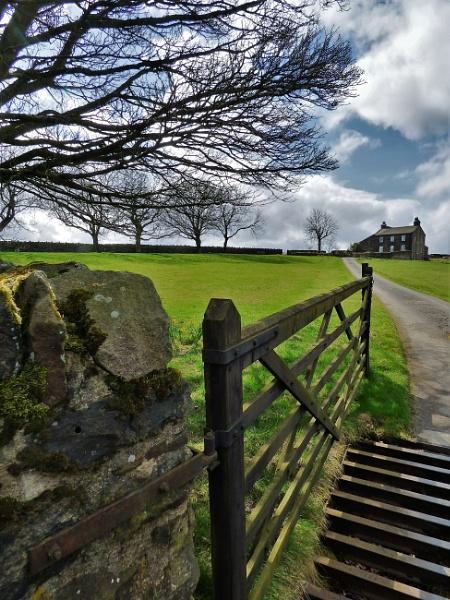 Summer house farm by cookyphil