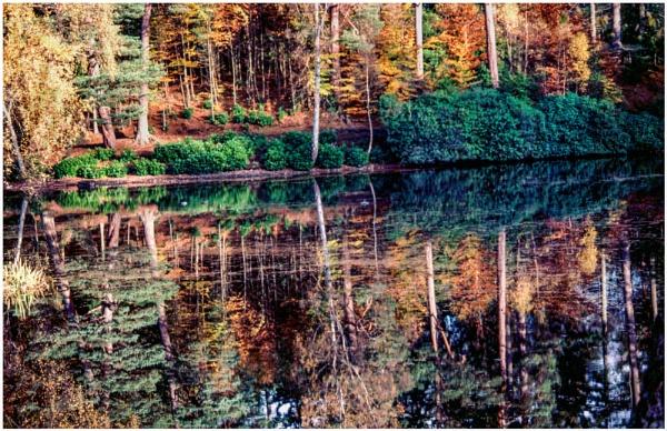 Faskally Autumn by mac