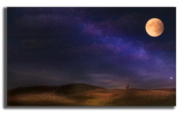 Moonlit Walk. by carper123