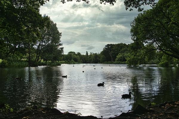 The Lake by woodini254