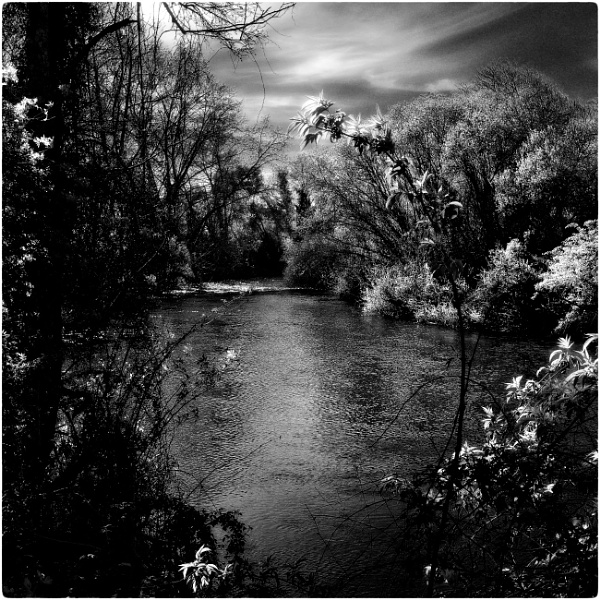 Looking downstream (ir) by jacomes