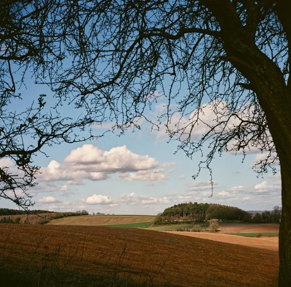 Hello clouds, hello sky! by Ericsamson
