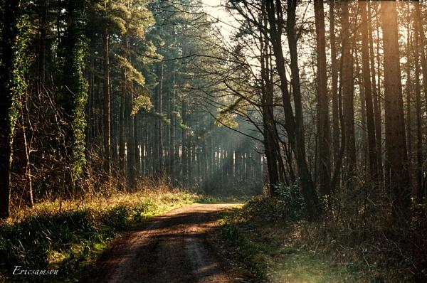 Walking home by Ericsamson