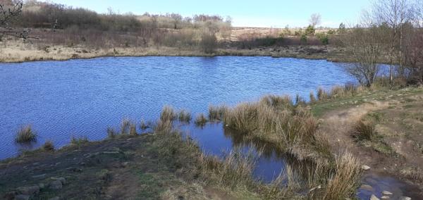 Ramsley reservoir by Alan26