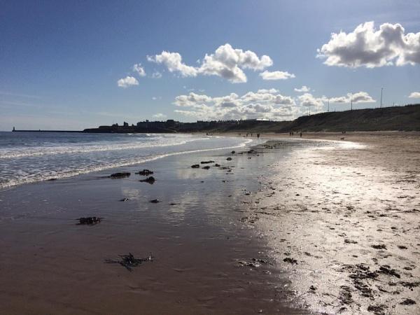 Tynemouth Longsands beach Tyne and Wear by topcatj