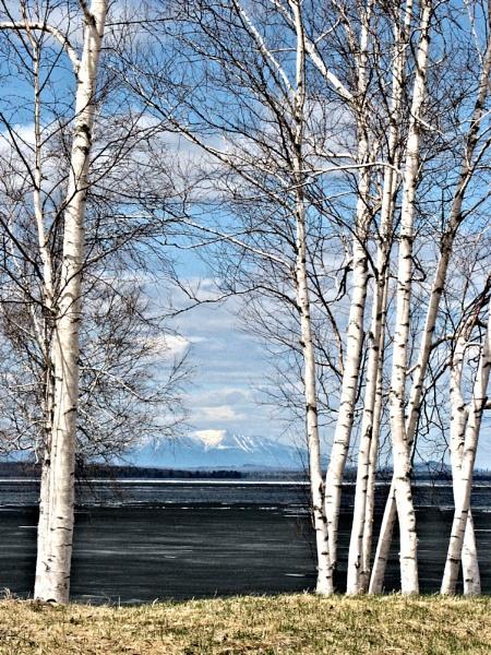 Mt. Katahdin from Schoodic Lake by Joline