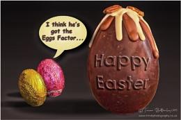 The Eggs Factor