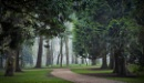 chasing the fog -Antrim - N.Ireland 2 by atenytom at 05/04/2021 - 8:28 AM