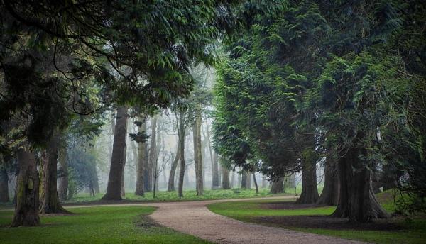 chasing the fog -Antrim - N.Ireland 2 by atenytom