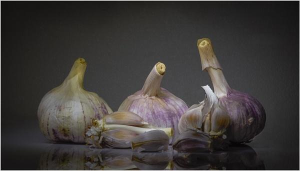Garlic Group. by dusfim