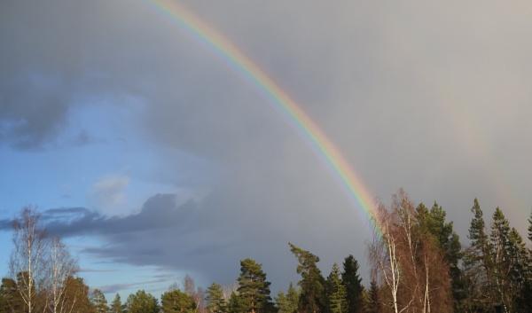 Rainbow. by Jukka