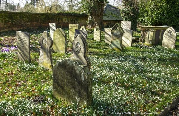 St.Chad\'s church graveyard & snowdrops 9...March 2021 by RayHeath