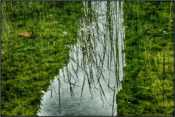 brooke in the water by FabioKeiner