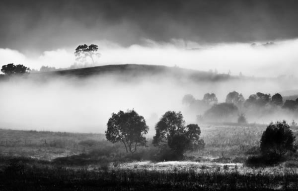 Autumn Fog at Uriarra, Australian Capital Territory by BobinAus