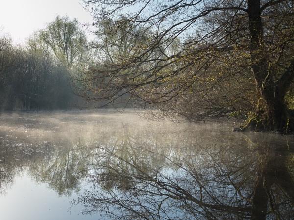 misty reflection by alfpics