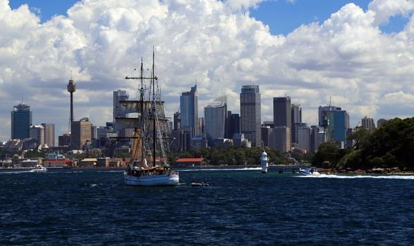 Sydney Harbour by Ffynnoncadno