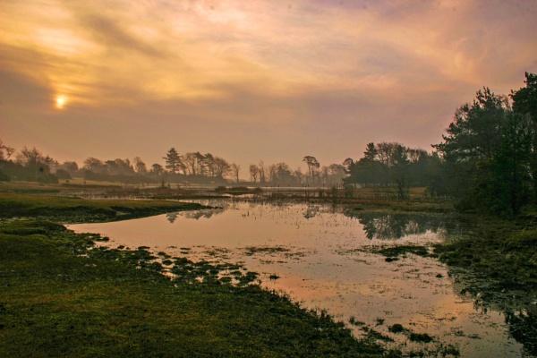 Hatchett Pond by blrphotos