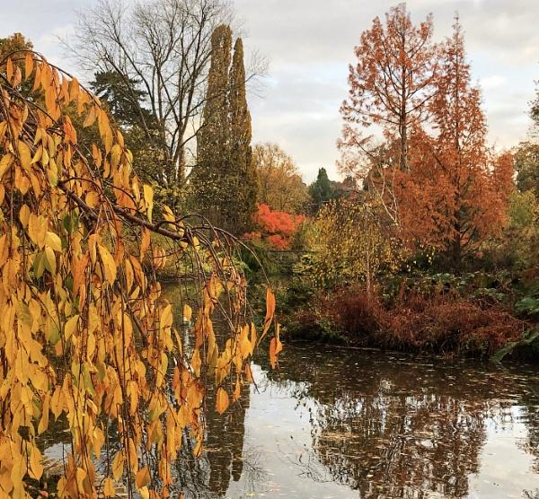 Autumnal Wisley by Kaxxie