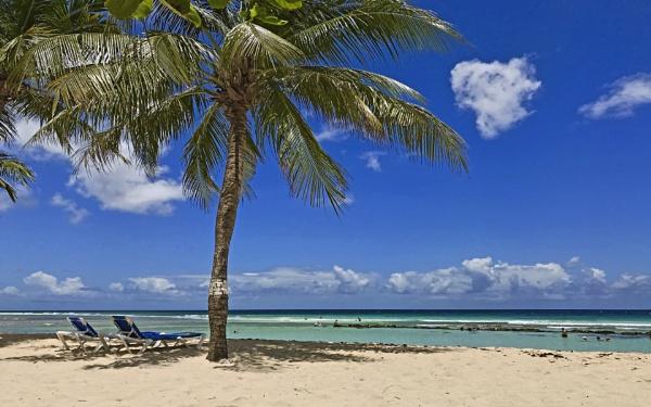 Coconut Beach Barbados by photododger