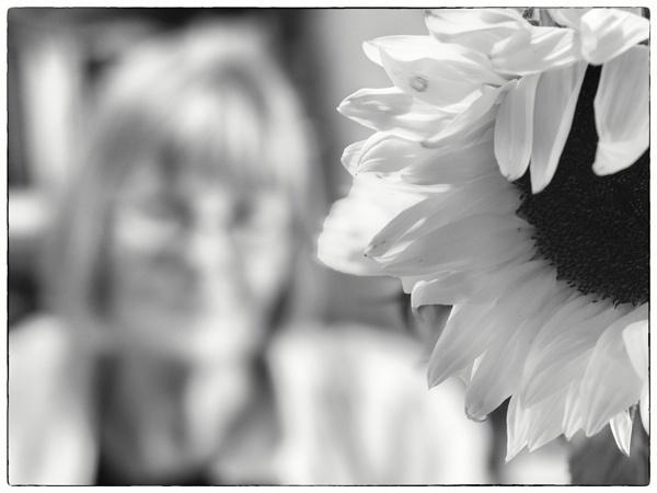 Sunshine by woolybill1