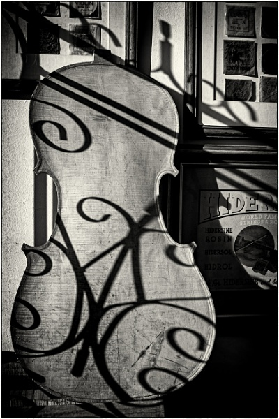 The Violin Shop by mrswoolybill