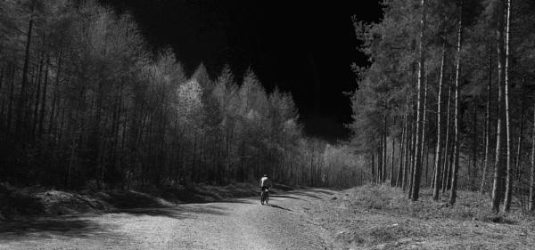 Bike trail (Infra Red) by af1