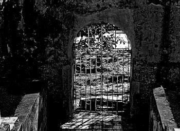 Crypt-ic Shadows