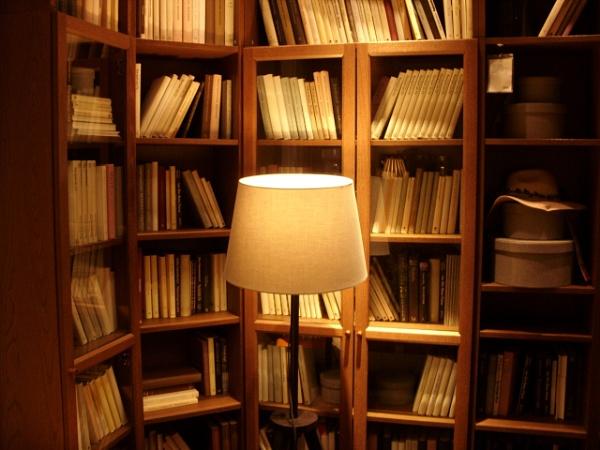 Lamp by Realszoc75